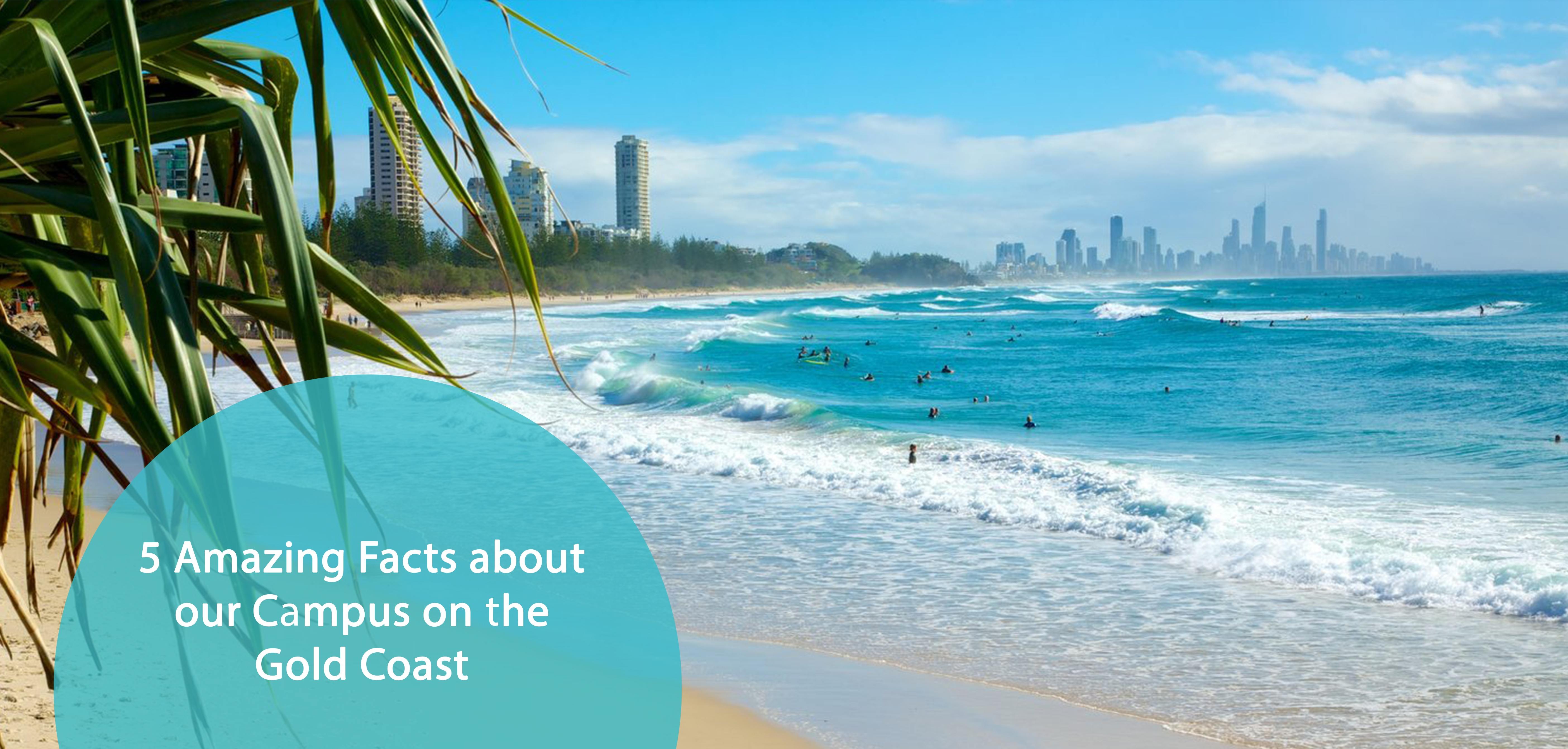 gold coast facts