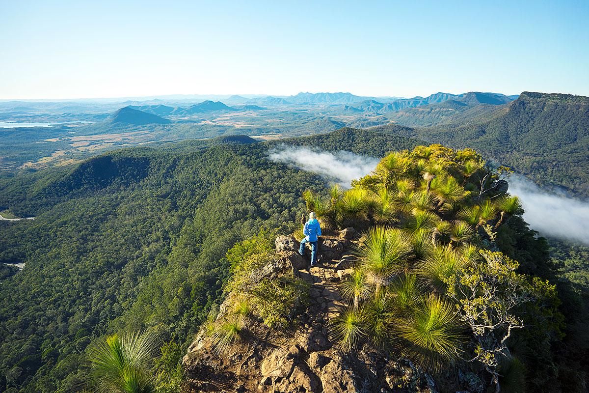 scenic-rim-trail-queensland-great-walks-of-australia-summit-mount-mitchell